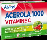 Govital Acerola 1000 à YZEURE