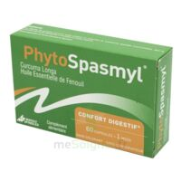 Phytospasmyl Caps B/60 à YZEURE