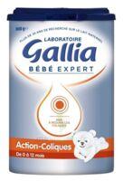Gallia Bebe Expert Ac Transit 2 Lait En Poudre B/800g à YZEURE