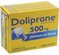 DOLIPRANE 500 mg Poudre pour solution buvable en sachet-dose B/12 à YZEURE