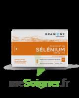 GRANIONS DE SELENIUM 0,96 mg/2 ml S buv 30Amp/2ml à YZEURE
