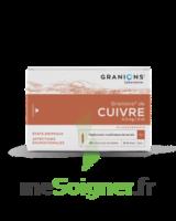GRANIONS DE CUIVRE 0,3 mg/2 ml S buv 30Amp/2ml à YZEURE