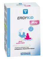 Ergykid Mag Poudre Solution Buvable 14 Sachets à YZEURE