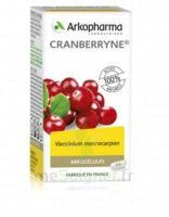 Arkogélules Cranberryne Gélules Fl/150 à YZEURE