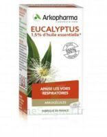Arkogélules Eucalyptus Gélules Fl/45 à YZEURE