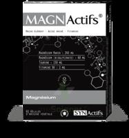 Synactifs Magnactifs Gélules B/60 à YZEURE