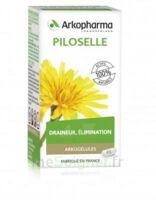 Arkogélules Piloselle Gélules Fl/45 à YZEURE