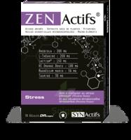 Synactifs Zenactifs Gélules B/30 à YZEURE