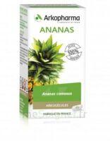 Arkogélules Ananas Gélules Fl/45 à YZEURE