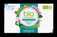 Nutrisanté Infusions Bio Tisane Confort de la gorge 20 Sachets à YZEURE