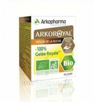 Arkoroyal 100% Gelée Royale Bio Gelée Pot/40g à YZEURE