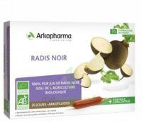 Arkofluide Bio Ultraextract Radis noir Solution buvable 20 Ampoules/10ml à YZEURE