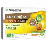 Arkoroyal Gelée Royale Bio 1000 Mg Solution Buvable 20 Ampoules/10ml à YZEURE