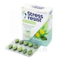 Stress Resist Comprimés Stress & fatigue B/30 à YZEURE