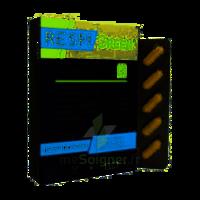 Synactifs Respigreen Bio Gélules B/10 à YZEURE