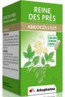 Arkogelules Reine Des Prés Gélules Fl/45 à YZEURE
