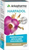 ARKOGELULES HARPAGOPHYTON, 150 gélules à YZEURE