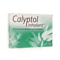 CALYPTOL INHALANT, émulsion pour inhalation par fumigation à YZEURE