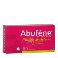 Abufene 400 Mg Comprimés Plq/60 à YZEURE
