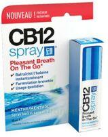 CB 12 Spray haleine fraîche 15ml à YZEURE
