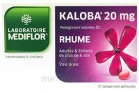 KALOBA 20 mg Comprimé pelliculé Plq/21 à YZEURE