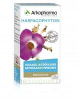 ARKOGELULES HARPAGOPHYTON, 45 gélules à YZEURE