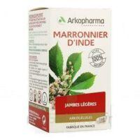 ARKOGELULES MARRONNIER D'INDE, gélule à YZEURE