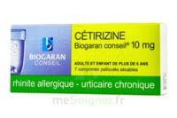 CETIRIZINE BIOGARAN CONSEIL 10 mg, comprimé pelliculé sécable à YZEURE