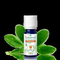 Puressentiel Huiles essentielles - HEBBD Ravintsara BIO* - 5 ml à YZEURE