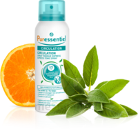 PURESSENTIEL CIRCULATION Spray 17 huiles essentielles à YZEURE