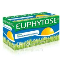 Euphytose Comprimés Enrobés B/120 à YZEURE