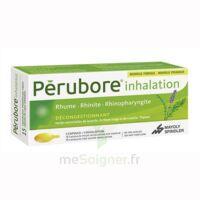 Perubore Caps Inhalation Par Vapeur Inhalation Plq/15 à YZEURE