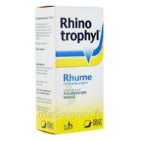 RHINOTROPHYL Solution pour pulvérisation nasale 1Fl/12ml à YZEURE