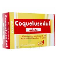COQUELUSEDAL ADULTES, suppositoire à YZEURE