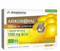 Arkoroyal Gelée royale bio 1500 mg Solution buvable 20 Ampoules/10ml à YZEURE