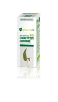 Huile essentielle Bio Eucalyptus Citronné  à YZEURE