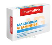 Magnésium Vitamine B6 à YZEURE