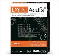 Synactifs Dynactifs Gélules B/30 à YZEURE