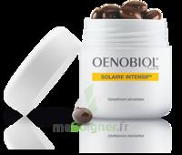Oenobiol Solaire Intensif Caps peau normale Pot/30 à YZEURE