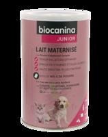 Biocanina Lait Poudre Maternisé B/400g à YZEURE