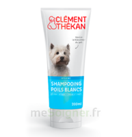 Clément Thékan Shampooing poils blancs T/200ml à YZEURE