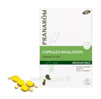 Aromaforce Caps inhalation bio B/15 + Inhalateur à YZEURE