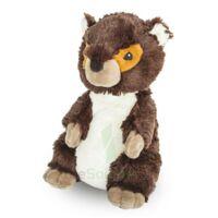 Soframar Bouillotte Marmotte à YZEURE