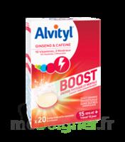 Alvityl Boost Comprimés B/20 à YZEURE