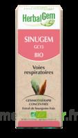 Herbalgem Sinugem Solution Buvable Bio Fl Cpte-gttes/30ml à YZEURE