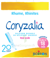 Boiron Coryzalia Solution buvable unidose B/20 à YZEURE