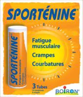 Boiron Sportéine 33 Comprimés à YZEURE