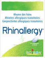Boiron Rhinallergy Comprimés B/40 à YZEURE