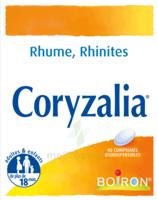 Boiron Coryzalia Comprimés orodispersibles à YZEURE