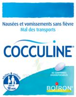 Boiron Cocculine Comprimés orodispersibles B/40 à YZEURE